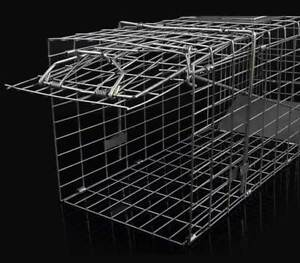 1-x-TRAP-Humane-possum-cat-rat-rabbit-bird-animal-cage-live-quality