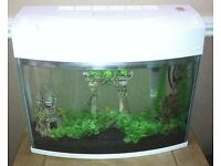 Fish Tank 20l in White with Accessories
