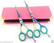 Professional Hair Cutting Shears