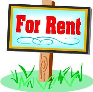 LARGE BACHELOR APARTMENT FOR RENT IN CENTRAL SAINT JOHN