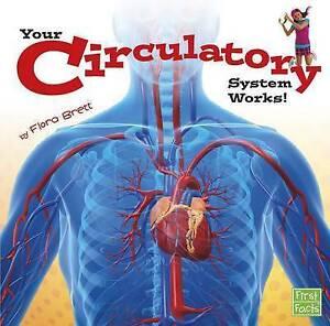 Your Circulatory System Works! by Flora Brett (Paperback / softback, 2015)