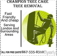 Champion tree care tree removel