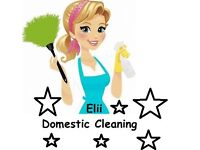 Domestic Cleaning In BristoL