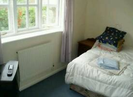 Canterbury -room to let