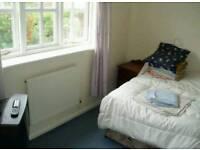 Canterbury -big room to let