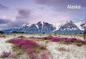 Alaska-ALASCA-Foto-FRIGO-FRIGORIFERO-CALAMITA-VIAGGIO-SOUVENIR-NUOVO