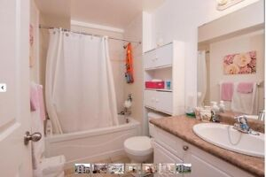 western student rental **group of 5-7**