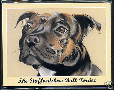 THE STAFFORDSHIRE BULL TERRIER - Dog Breeds Collectors Card Set - Staffie Staffy