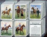 Jockey Cards Sets