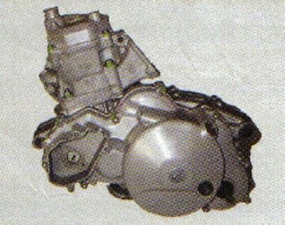 APRILIA RS RX 125 - Rotax 123 - >50 Motor Schrauben Set 22< Normteile Satz NEU