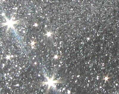Gen Silver Glitter Plastisol Screenprint Ink Pint