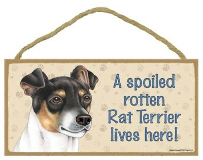 A Spoiled Rotten Rat Terrier lives here Cute Dog Sign 5
