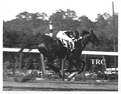 WAR ADMIRAL 8X10 HORSE RACING PHOTO AT BELMONT STAKES FINISH LINE! - Horse Racing Photo