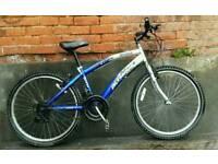 Lightweight unisex bike