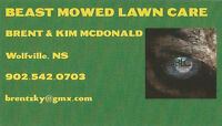 BEAST MOWED LAWN CARE