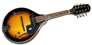 Brand new! Never played, electric fender mandolin