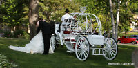 25% off Wedding and Engagement Packages Until June 15