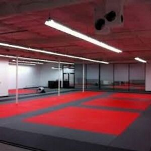 Interlocking Gym Mats