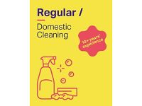 Regular domestic cleaning + £10 p/h + 10 years' plus experience