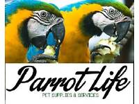 Parrotlife pet supplies and services