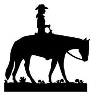 Professional horse services - Training, Lessons & Clinics