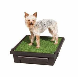 "New Pet Safe; The Pet Loo Size Small 20"" x 17.7"" x 5"" (damagedbox) MSRP $130 PU2"