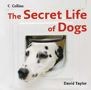 The Secret Life of Dogs, Taylor, David, Very Good Book