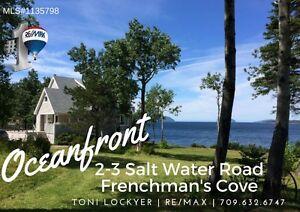 OCEANFRONT HOME 2-3 Salt Water Rd #FrenchmansCove #ToniLockyer