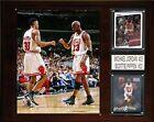 Scottie Pippen NBA Plaques