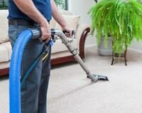 Personal touch carpet cleaning 613 246 4578 Eva's Premier