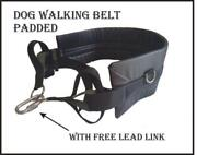 Dog Walking Belt