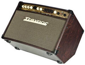 Traynor AM Standard acoustic amp.
