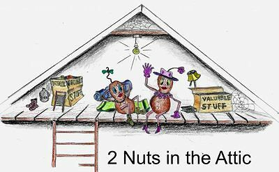 2 Nuts in the Attic
