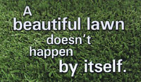 Lawn Care and Property Maintenance in Brantford