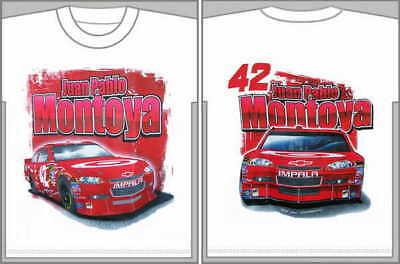 Juan Pablo Montoya 2011 Wincraft Target 12x30 Pennant
