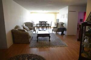 *LARGE AND BRIGHT 5 ½ CONDO,RECENTLY RENOVATED,ANIMALS WELCOME!*