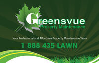 Lawn Care Cutting Mowing  One time or season!  Clean ups