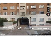 Beautiful 1 bedroom flat to rent in W6, available now !