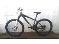 Giant Brass mountain bike/jump bike