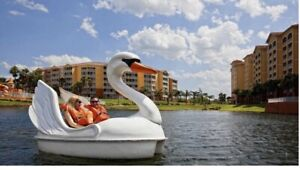 1 week in Kissimmee close to theme parks