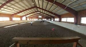 Boarding at Rougemont/four winds equestrian Cambridge Kitchener Area image 1