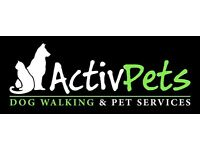 Dog Walking & Pet Sitting Services