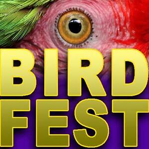 BIRDFEST 12th March Native & Exotic Birds For Sale 9am Cleveland Redland Area Preview