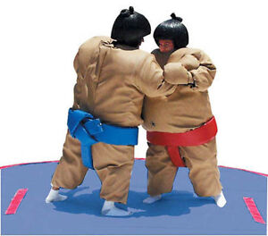 Sumo Wrestling Suits RENTAL( A LOT OF FUN..)