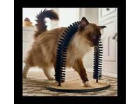 Cat Massager & Groomer