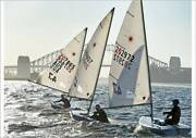 Laser Olympic Sailing Dinghy and Registered  Trailer Pymble Ku-ring-gai Area Preview