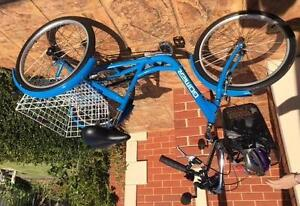 Adult Tri-cycle with basket Mornington Mornington Peninsula Preview