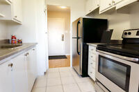 Pet friendly 1 and 2 BDRM apartments on Ave Adalbert!