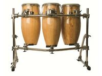 Bongo player/percussionist available