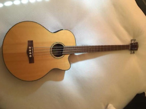 Fender Acoustic-Electric Bass